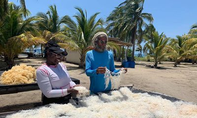 Strong Coasts Trainee Consulting with Local Belizean
